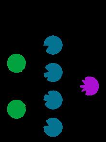 Esempio di rete neurale